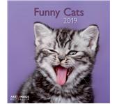 KALENDER 2019 TENEUES ART&IMAGE FUNNY CATS 30X30CM