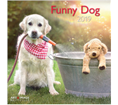 KALENDER 2019 TENEUES ART&IMAGE FUNNY DOG 30X30CM