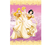 DAGBOEK DISNEY PRINSES